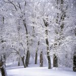 hypothermia blog